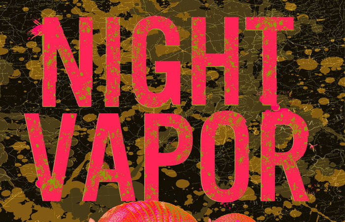 Night Vapor Play An Exciting Guttural Blend Of Punching Noise Rock On '1,000 Miles of Mud'