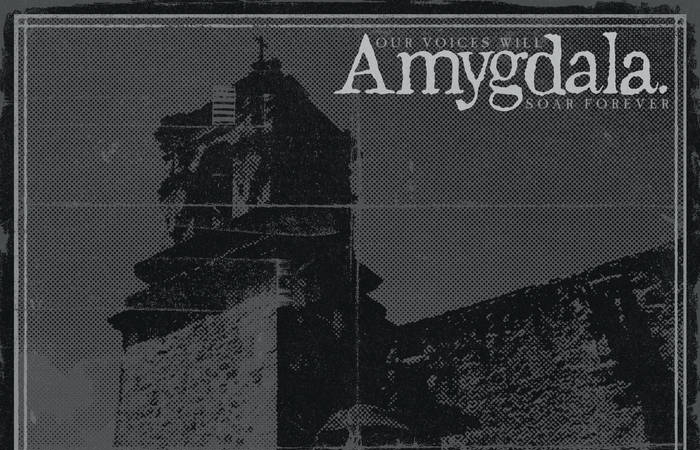 Amygdala's Thrillingly Harsh New Heavy Punk Album Confronts Deeply Set Turmoil