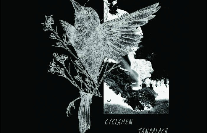 New Cyclamen/ Janpalach Split Delivers Intense & Deeply Moving Screamo