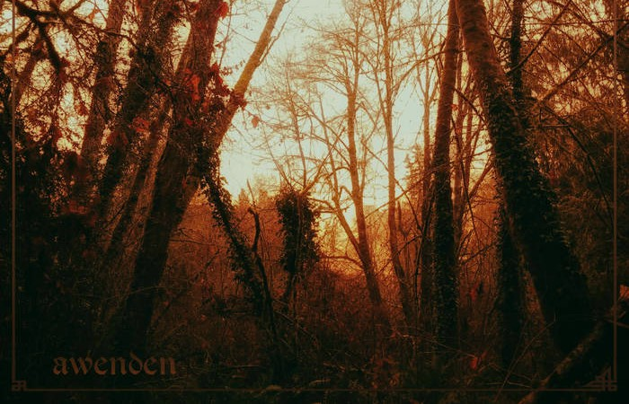 Awenden's Creator Explains The Project's Richly Immersive Cascadian Black Metal