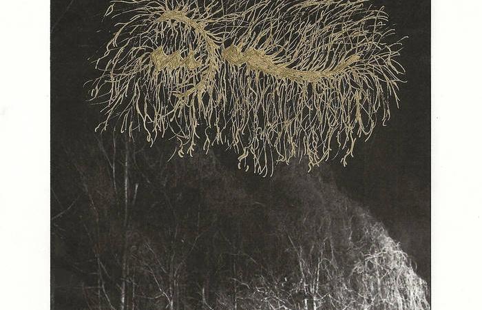 North Carolina's Yoe Pack Roaring Avant-Garde Black Metal On Disorienting New EP